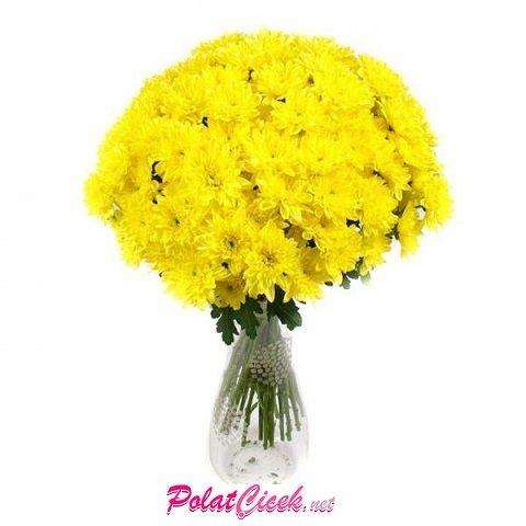 Seramik Vazoda Sarı Papatya
