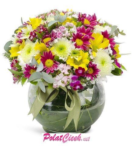 Fanusta Kır Çiçeği